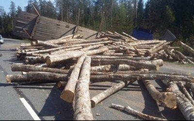 Лесовоз рассыпал бревна по «Скандинавии» после ДТП