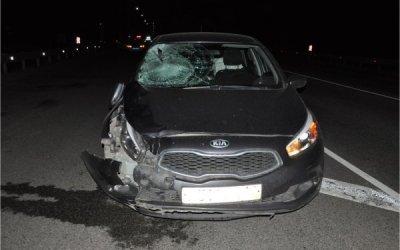 В Скопинском районе водителя, вышедшего на дорогу, насмерть сбила машина