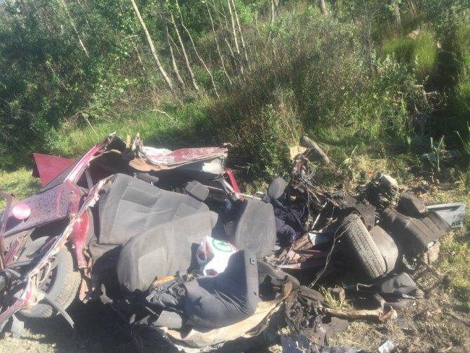 Два человека погибли в ДТП с лосем на трассе «Кола» в Ленобласти (1)