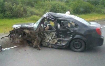 Водитель иномарки погиб в ДТП с фурой в Псковской области