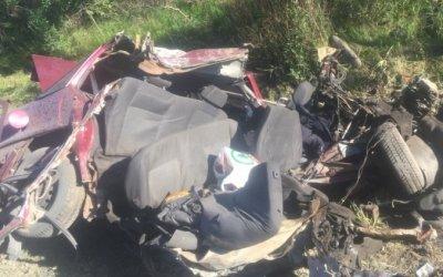 Два человека погибли в ДТП с лосем на трассе «Кола» в Ленобласти