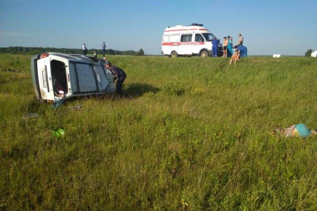 В Тюменской области по вине пьяного водителя погибла пассажирка иномарки (3)