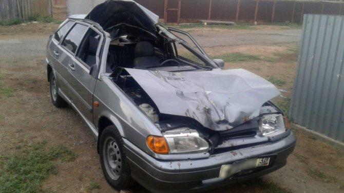 В ДТП с верблюдом под Астраханью пострадали три человека