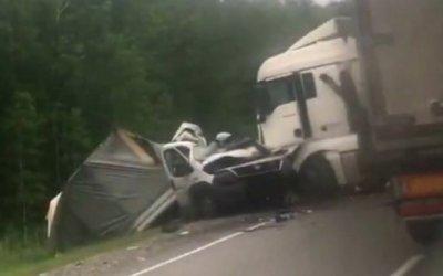 Водитель грузовика погиб в ДТП в Омской области
