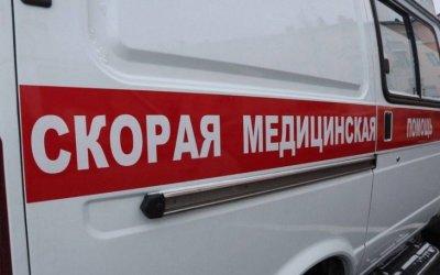 В Кировском районе многодетная семья попала в ДТП из-за кабана – погиб ребенок