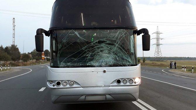 Автобус насмерть сбил женщину в Рязанской области (1)