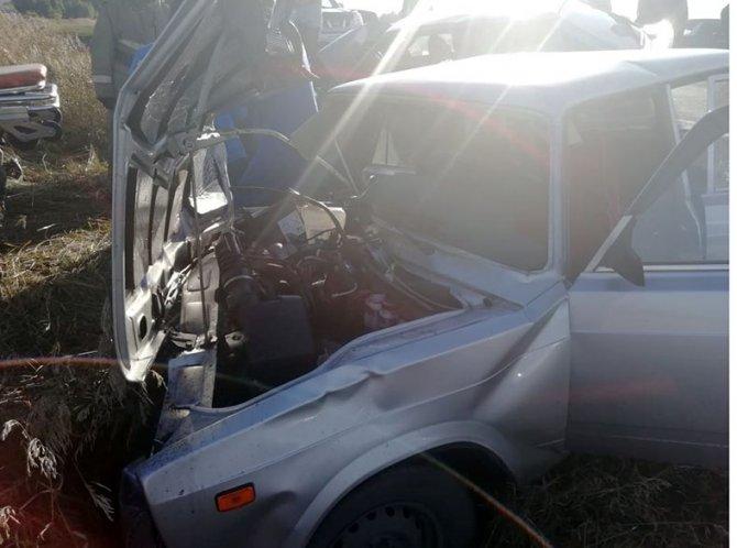 Пять человек, включая ребенка, пострадали в ДТП под Бийском (3)