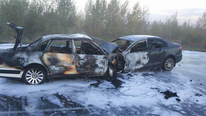 Пять человек погибли в ДТП в Воронежской области (1)