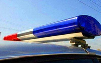 Пешеход погиб под колесами автомобиля в Воронежской области