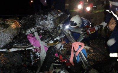 В ДТП с лосем в Марий Эл погибли 2 человека