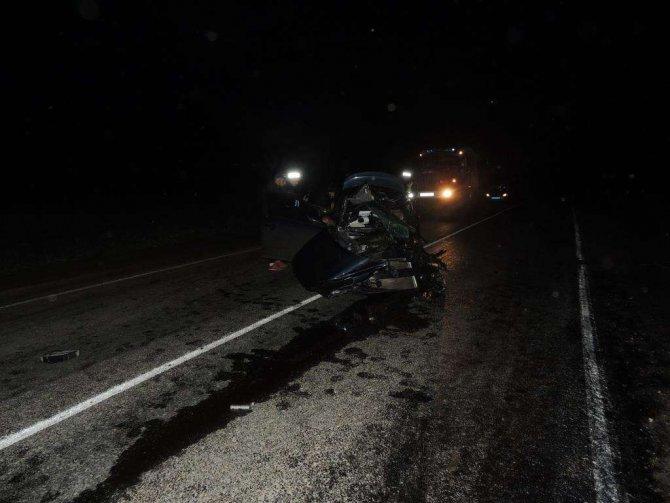 Водитель иномарки погиб в ДТП в Городецком районе (2)