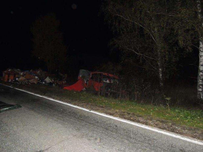 Водитель иномарки погиб в ДТП в Городецком районе (5)