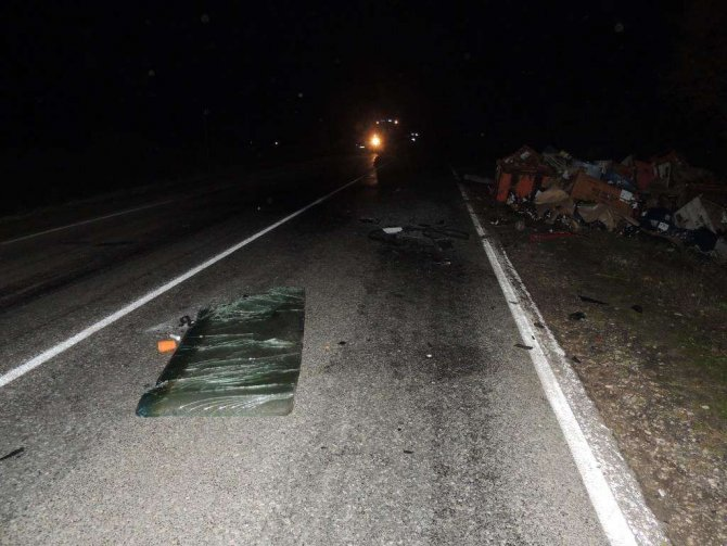 Водитель иномарки погиб в ДТП в Городецком районе (4)