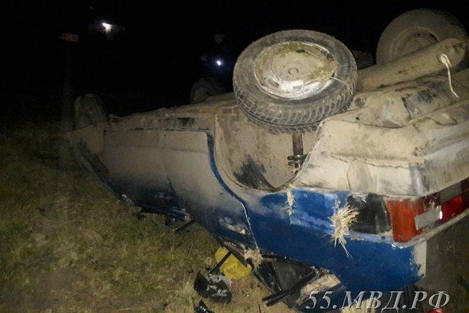 Под Омском водитель насмерть сбил двух лошадей (1)