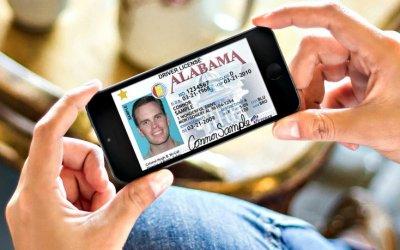 ВГИБДДРФ одобрили переход наэлектронные «права»