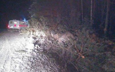 В Башкирии погиб водитель опрокинувшегося грузовика