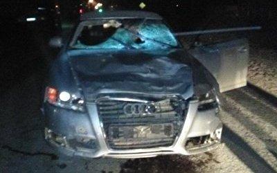 В Пермском крае иномарка насмерть сбила трех пешеходов