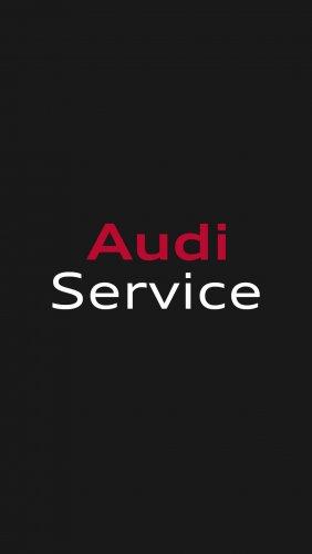 Приложение Audi Service.jpg