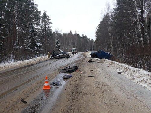 Годовалая девочка погибла в ДТП в Кулебакском районе (2)