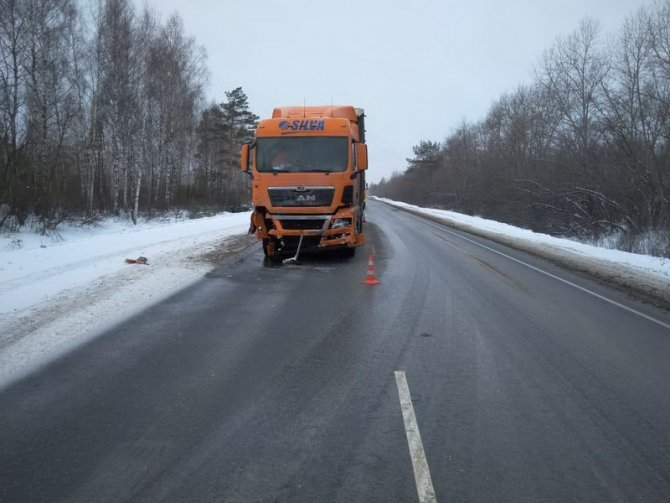 В Сасовском районе иномарка столкнулась с грузовиком – пострадал человек (1)