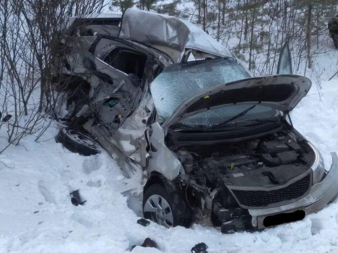 В Сасовском районе иномарка столкнулась с грузовиком – пострадал человек (3)