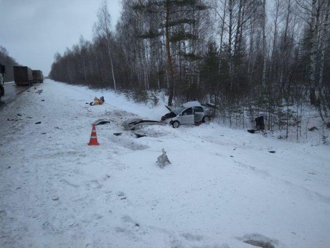 В Сасовском районе иномарка столкнулась с грузовиком – пострадал человек (2)