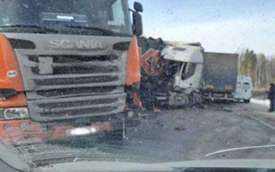Два человека погибли в массовом ДТП с грузовиками в Челябинской области