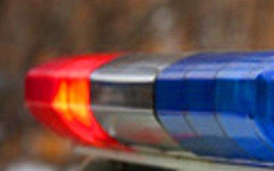 Два человека погибли в ДТП в Ногинском районе Подмосковья