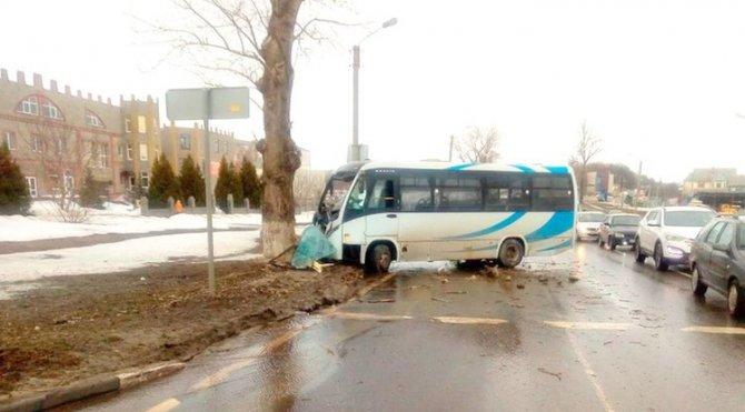 Маршрутка с пассажирами врезалась в дерево в Белгородской обрасти (2)
