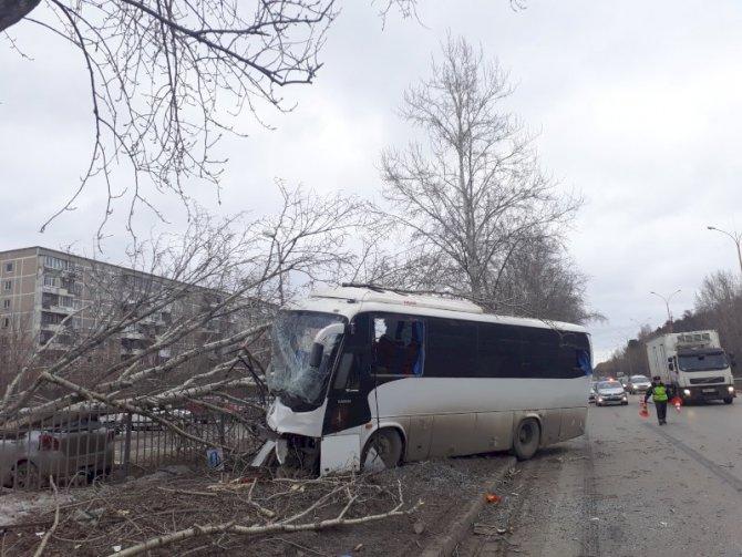 В Екатеринбурге водитель автобуса погиб, врезавшись в дерево (1)
