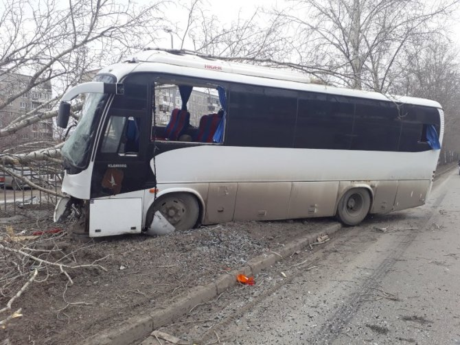 В Екатеринбурге водитель автобуса погиб, врезавшись в дерево (3)