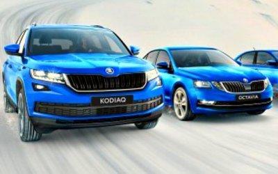 ВРоссии подорожали три модели Skoda