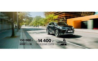 Быть в центре внимания. Lexus NX в Лексус – Волгоградский