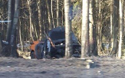 Водитель каршеринговой иномарки погиб в ДТП на Приморском шоссе