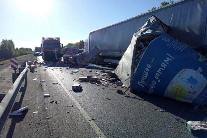 В ДТП с двумя фурами возле Шумихи погиб человек (1)