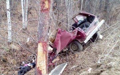 Под Тындой «Нива» врезалась в дерево – погибли двое