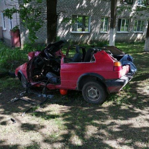 В Ленобласти иномарка врезалась в дерево – водитель погиб (2)