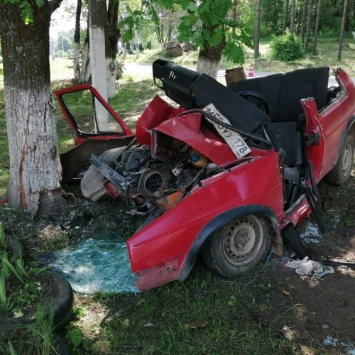 В Ленобласти иномарка врезалась в дерево – водитель погиб (1)
