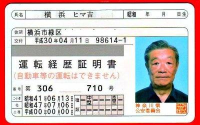 ВЯпонии появятся особые «права» для стариков