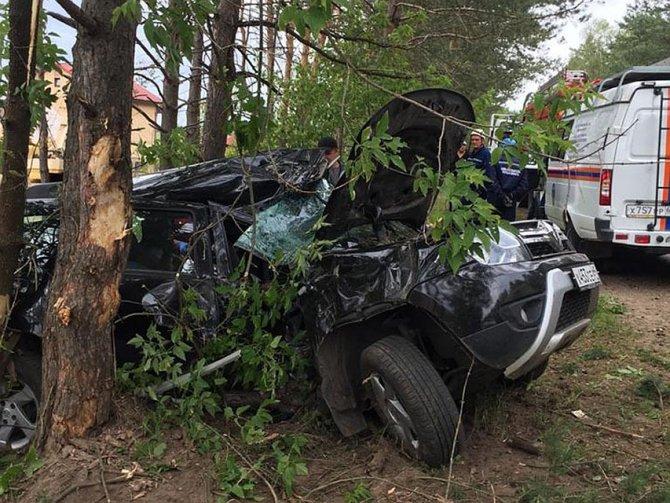 Два человека пострадали в ДТП с деревом под Тверью