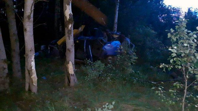 Во Владимирской области при опрокидывании машины в кювет погиб человек (2)