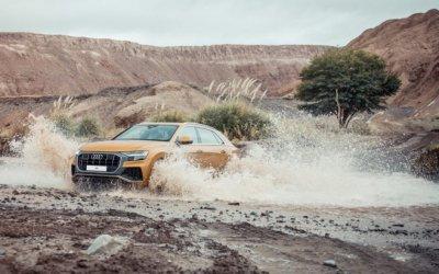Audi Авилон объявляет старт продаж дизельной модификации абсолютно нового Audi Q8