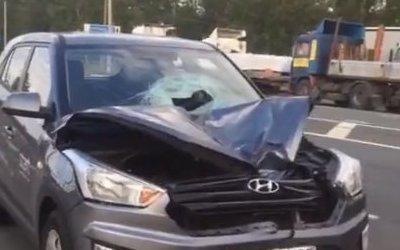 На трассе «Кола» насмерть сбили пешехода