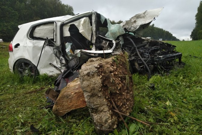 Пассажир иномарки погиб в ДТП в Тульской области (8)