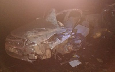 Три пассажира иномарки погибли в ДТП под Омском