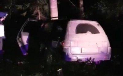 В Ленобласти ВАЗ врезался в дерево – погиб пассажир