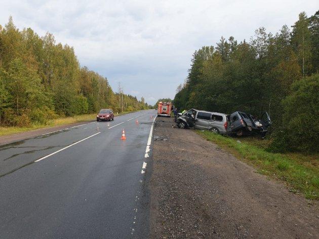 Два человека погибли в ДТП в Лужском районе Ленобласти (3)