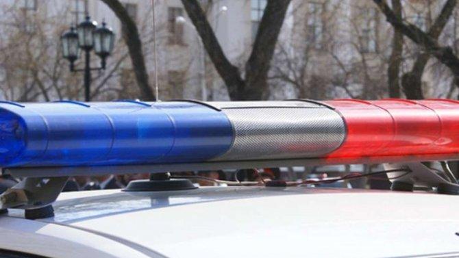 В Тосненском районе экскаватор насмерть задавил пешехода