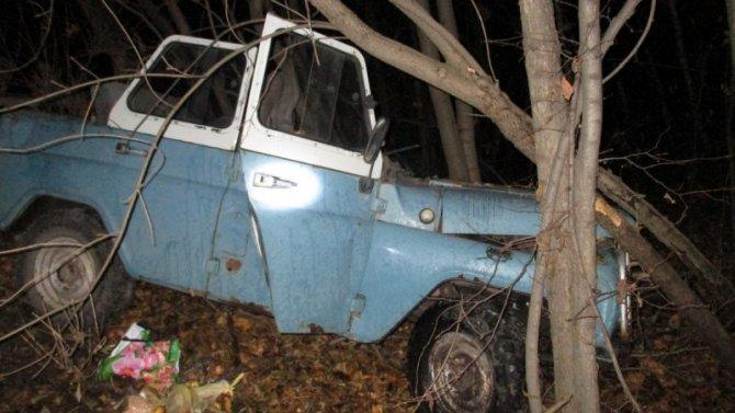 Водитель УАЗа погиб в ДТП в Брянской области