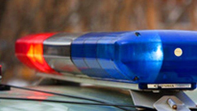 В Приморье в ДТП погибли женщина и 3-летняя девочка